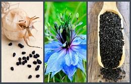 Полезные свойства масла чёрного тмина из Египта